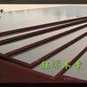 商洛竹模板市场商洛木材市场