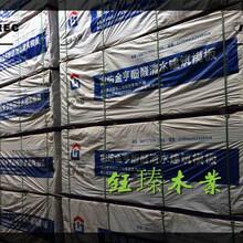 吉林竹胶板建筑模板优秀供应商图片