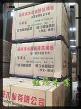 阜新建筑竹模板价格一览表说明图片