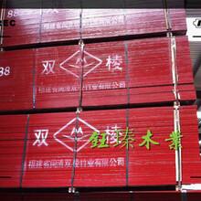铜川竹胶板建筑模板比较大的品牌图片