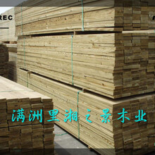 满洲里市批发樟松木方加工厂家图片