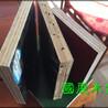 渭南竹胶模板批发市场