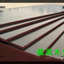 延安建筑竹胶板图片