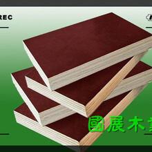 商洛人造板批发市场图片