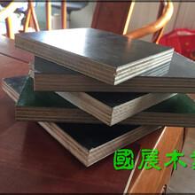 榆林支撑木模板厂家图片