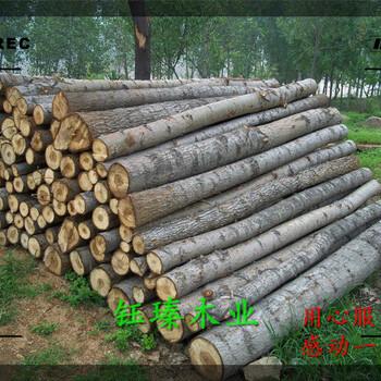 松原市杨木板材加工