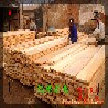 松原市木材批发