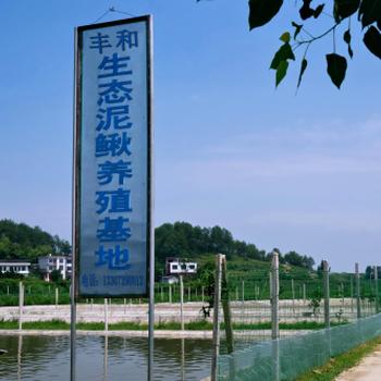 金鳅10号水产养殖