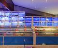 成都专业定做海鲜池河鲜池贝类池设计制作超市餐厅海鲜