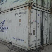 上海出租二手移动式冷藏集装箱图片