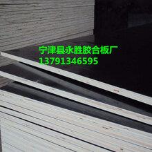清水建筑模板雙面覆膜板清水模板廠家工地多層板密度板