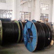 供应通信电缆光纤电缆大对数电话线矿用通信电缆银川现货厂家直销图片