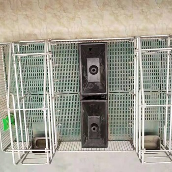 承德母猪产床尺寸-猪贝贝养殖设备
