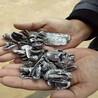 斷橋鋁合金破碎機分離塑料一噸利潤差價