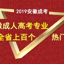 2020年安徽成人高考热门专业推荐