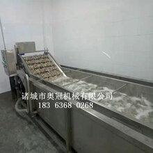 毛辊木薯去皮清洗机洗莲藕的机器马蹄滚刷去泥机毛辊清洗机图片