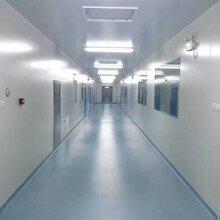 山东洁净净化车间-电子厂净化工程一平一净化室案例展示图片