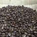 吉森咖啡供应埃塞俄比亚水洗耶佳雪菲精品咖啡豆