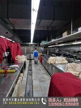 深圳市龙岗区专业白蚁防治公司