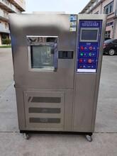 臭氧老化試驗箱臭氧老化箱臭氧老化試驗機圖片