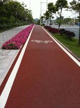 广西崇左市海绵城市道路透水地坪健身步道图片