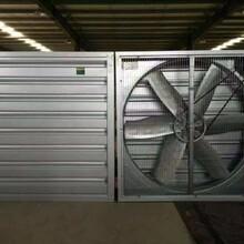 中山廠房排熱風、降溫水簾、抽風機安裝圖片