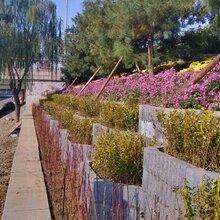 北京供应信息折板挡墙砌块_折板砌块_折板砖图片