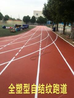 全塑型自结纹跑道施工、材料生产图片3