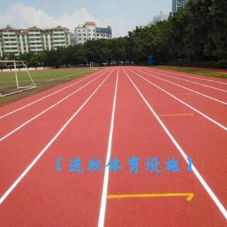 全塑型自结纹跑道施工、材料生产图片4
