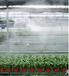 墾利16滴灌管廠家直銷節水灌溉