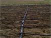 福州迷宫式滴灌带生产厂家果园灌溉节水灌溉