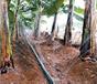 本溪噴灌帶設備pe管道迷宮式滴灌帶