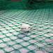 广州佛山珠海足球场围网球场尼龙软网高尔夫球场拦网