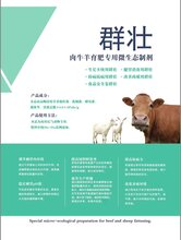 牛羊专用微生态制剂益生菌群壮图片