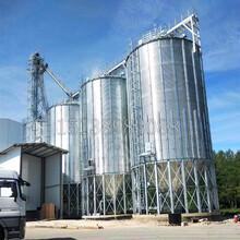 平底鋼板倉大型鋼板倉廠家糧食豆粕鋼板倉圖片圖片