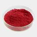 供应C.I.颜料红399%原料2425-85-6工业用有机颜料或染料