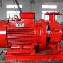 上海栋欣泵业、消防泵