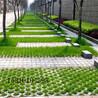 地砖,草坪砖,透水砖,渗水砖,生态砖,面包砖