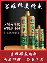 天津晶瓷王美缝剂环保净味高端儿童房专用美缝剂图片