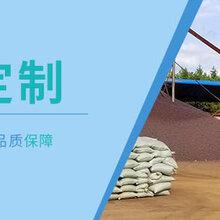 英德陶粒厂家价格低廉英德陶粒批发保质保量图片