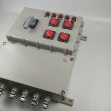 隆业专供-防爆配电箱的作用防爆配电箱材质图片