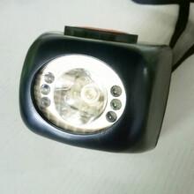 智能数码工作头灯/固态防爆头灯图片
