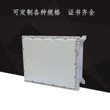 本安型接线箱防爆仪表接线箱照明接线箱图片