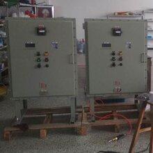 隆业专供-不锈钢防爆配电箱非标防爆配电柜图片