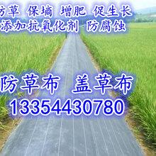 山东2米宽果园防草布生产厂优游注册平台图片