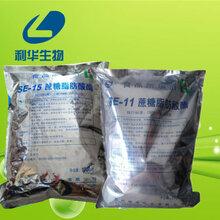 蔗糖酯原料生产商食用蔗糖酯什么价格