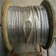 供應13mm熱鍍鋅防扭鋼絲繩量大優惠無扭鋼絲繩現貨圖片
