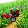 菜园种植用开沟机小型大葱开沟培土机田园管理机