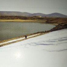 正宇供应人工湖防渗膜。直销钢朔土工格栅、纤维网格布。图片
