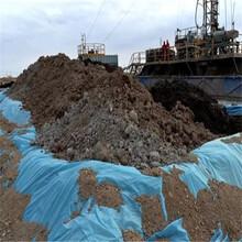 水产养殖防渗膜质量可靠,土工膜图片